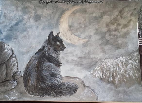 day2-cat