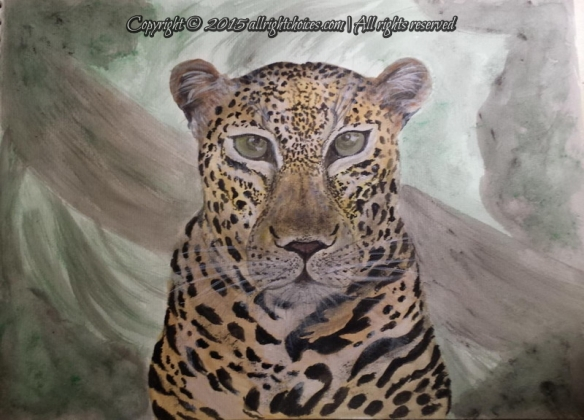 day6-leopard