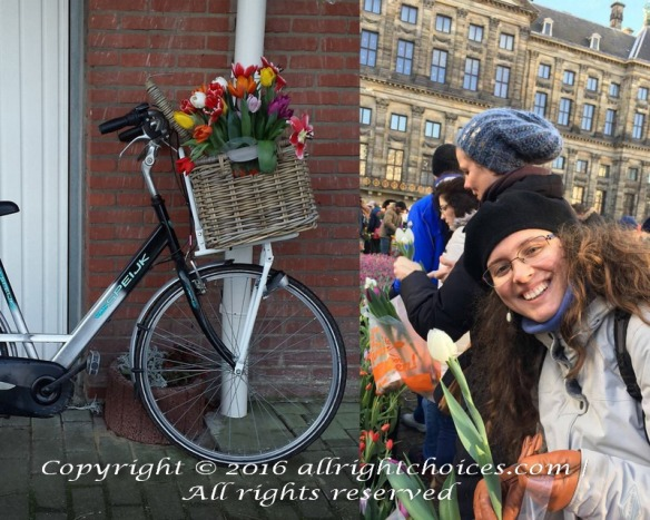 National Tulip Day Jan 16 2016 Picking flowers and Bike basket