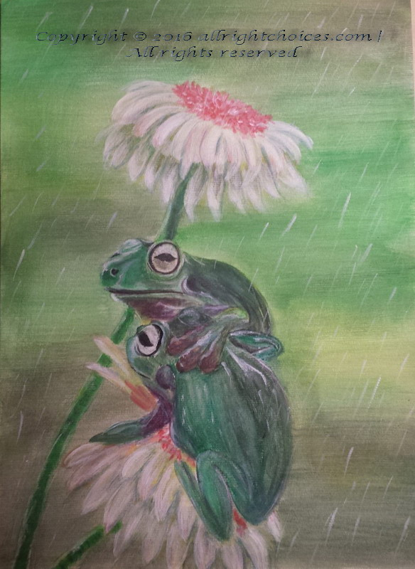 frogs flowers rain