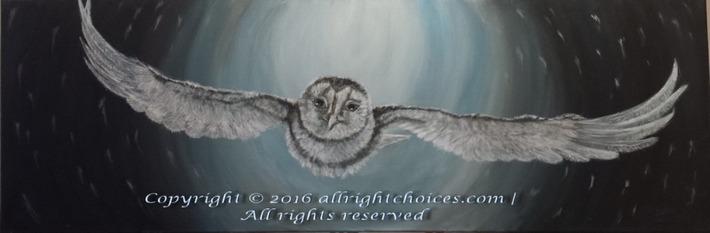 snow owl snow storm